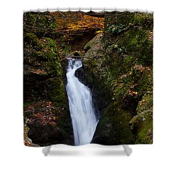 Autumn Falls Shower Curtain by Karol Livote