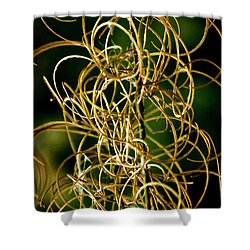 Shower Curtain featuring the photograph Autumn Fireweed by Albert Seger