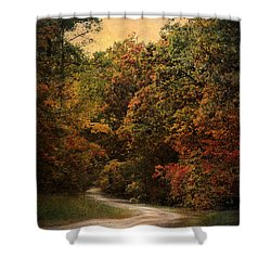 Autumn Forest 1 Shower Curtain by Jai Johnson