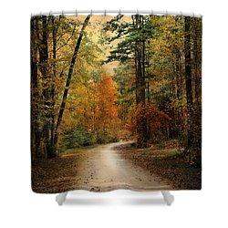 Autumn Forest 4 Shower Curtain by Jai Johnson