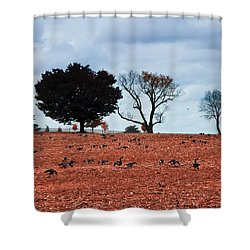 Autumn Geese Shower Curtain by Bill Cannon