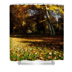 Autumn Shower Curtain by Hannes Cmarits