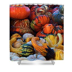 Autumn Harvest Shower Curtain by Carol Cavalaris