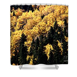 Autumn In Colorado Painting Shower Curtain