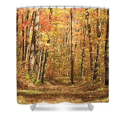 Shower Curtain featuring the photograph Autumn In Minnesota by Penny Meyers