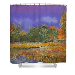 Autumn In Nisqually Shower Curtain by David Patterson