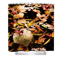 Autumn In Texas Shower Curtain