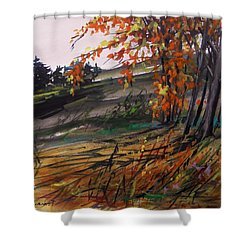 Shower Curtain featuring the painting Autumn Intensity by John Williams