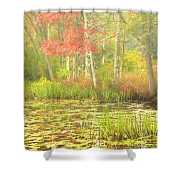 Autumn Is Here Shower Curtain by Karol Livote