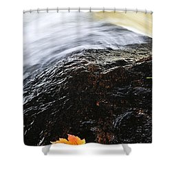 Autumn Leaf On River Rock Shower Curtain by Elena Elisseeva