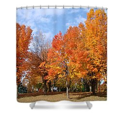 Shower Curtain featuring the photograph Autumn Leaves by Athena Mckinzie