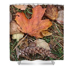 Shower Curtain featuring the photograph Autumn Leaves by Donna  Smith