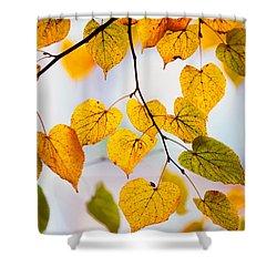 Autumn Leaves Shower Curtain by Jenny Rainbow