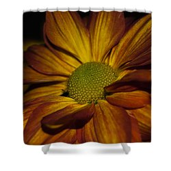 Autumn Mum Shower Curtain