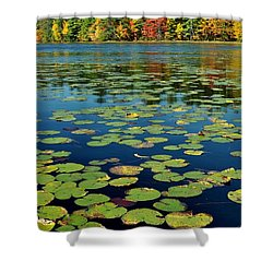 Autumn On The River Shower Curtain by Rick Frost