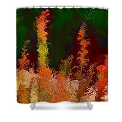 Autumn Pastel Shower Curtain by Tom Prendergast
