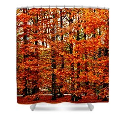 Autumn Red Maple Landscape Shower Curtain