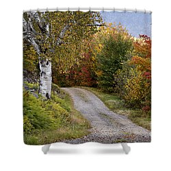 Autumn Road - D005840 Shower Curtain by Daniel Dempster