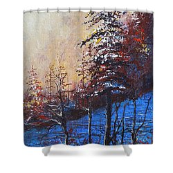 Autumn Silence Shower Curtain
