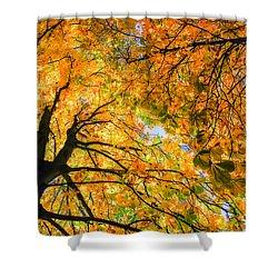 Autumn Sky Shower Curtain by Hannes Cmarits