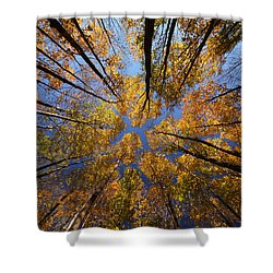 Autumn Sky Shower Curtain by Mircea Costina Photography