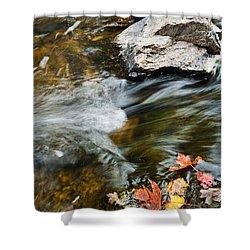 Autumn Stream Shower Curtain by Cheryl Baxter