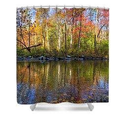 Autumn Stream Shower Curtain by Debra and Dave Vanderlaan