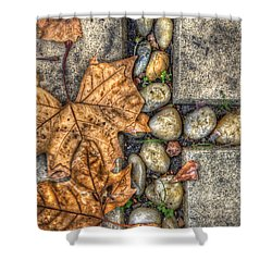 Autumn Texture Shower Curtain by Wayne Sherriff