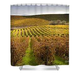 Autumn Vines Shower Curtain by Mike  Dawson