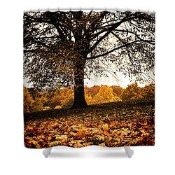 Autumnal Park Shower Curtain