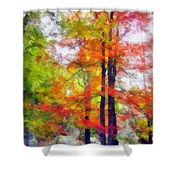Autumnal Rainbow Shower Curtain