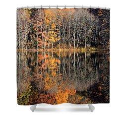 Autumns Art Shower Curtain by Karol Livote