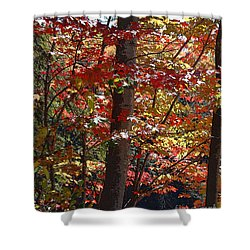 Autumn's Delight Shower Curtain