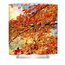 Autumns Gold Great Smoky Mountains Shower Curtain by Rich Franco