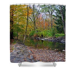 Autumn's Splendor Shower Curtain by Kay Novy