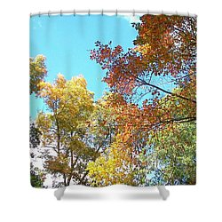 Shower Curtain featuring the photograph Autumn's Vibrant Image by Pamela Hyde Wilson