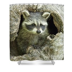 Awaiting Mom Shower Curtain by Sandra Bronstein