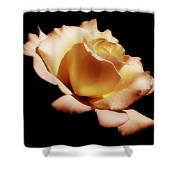 Awakening Shower Curtain by Kim Hojnacki