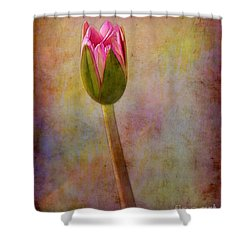 Awakening Water Lily Shower Curtain by Judi Bagwell