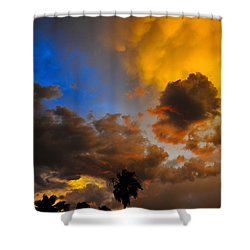 Aware Shower Curtain by Skip Hunt