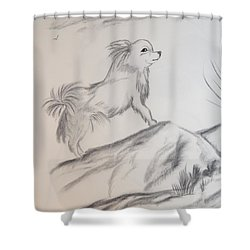 Shower Curtain featuring the drawing Aye Chihuahua by Maria Urso