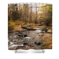 Babbling Brook In Autumn Shower Curtain