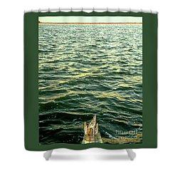 Back To The Sea Shower Curtain by Joe Jake Pratt