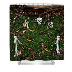 Back Yard Bone Yard Shower Curtain by LeeAnn McLaneGoetz McLaneGoetzStudioLLCcom