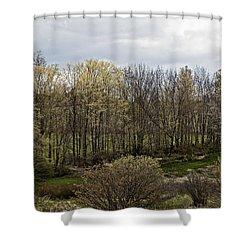 Back Yard Shower Curtain