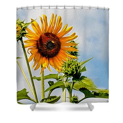 Backyard Guest Shower Curtain