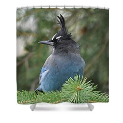 Bad Hair Day Shower Curtain by Dorrene BrownButterfield