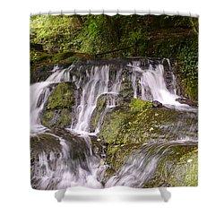Badger Dingle Shower Curtain by John Chatterley