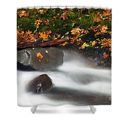 Balance Of The Seasons Shower Curtain by Mike  Dawson