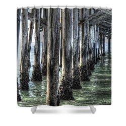 Balboa Pylons Shower Curtain